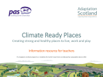 Primary_ - Adaptation Scotland