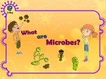 What are Microbes? - e-Bug