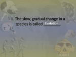 The slow, gradual change in a species is called ___Evolution_____