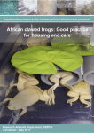 African clawed frogs: Good practice for housing and
