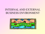 internal and external business environment