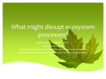 What might disrupt ecosystem processes? - Rawlins A