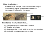 Four tenets of natural selection… Natural selection