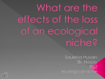 What are the effects of the loss of an ecological niche?