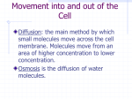 How do materials move across the cell membrane?