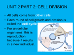 UNIT 2 PART 2 CELL DIVISION highlited