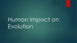 Human Impact on Evolution