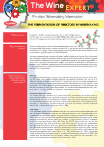 The Wine Expert: Fermentation of Fructose