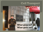 Cell Transport - Northwest ISD Moodle