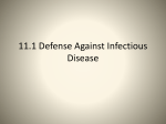 11.1 Defense Against Infectious Disease