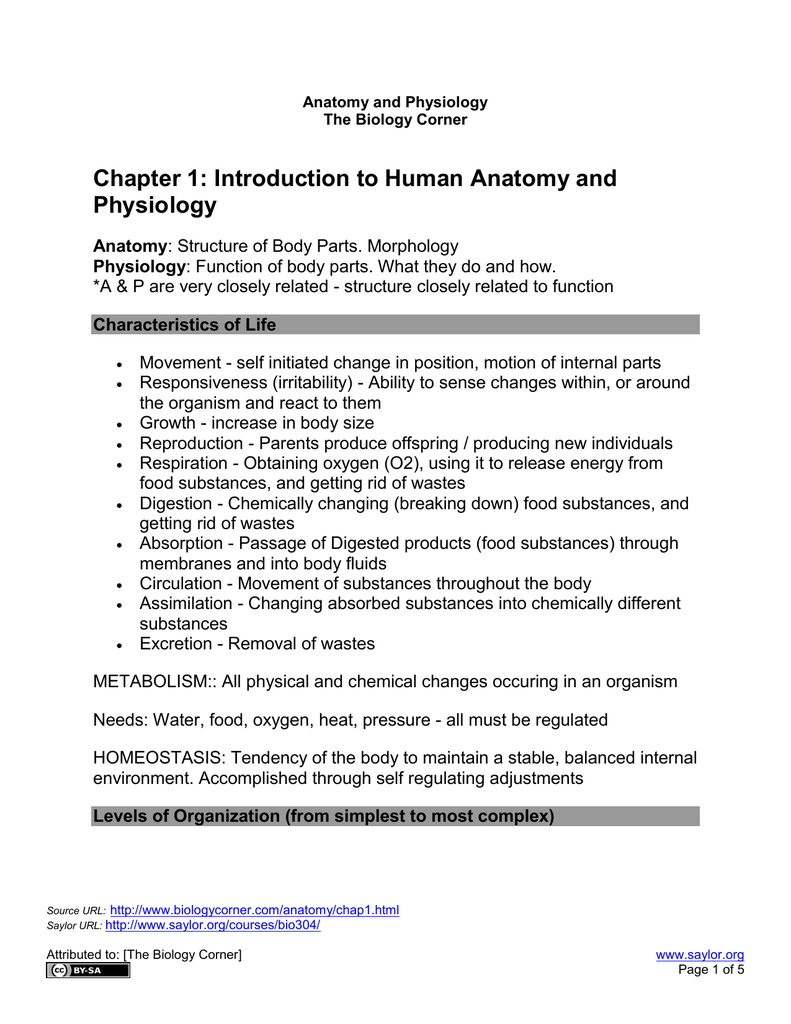 Chapter 1: Introduction to Human Anatomy and Physiology