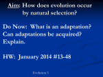 How does evolution occur by natural selection?