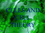 Cells and Cell Theory PowerPoint