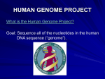 Human Genome Project and Sequencing