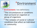 Environment - Effingham County Schools