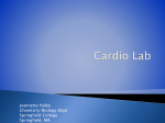 Cardio Lab - LifeSciTRC