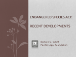 Endangered Species Act: Recent Developments (Powerpoint)