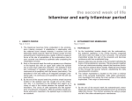 II the second week of life bilaminar and early trilaminar period