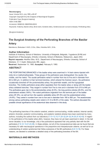 The Surgical Anatomy of the Perforating Branches of the Basilar Artery