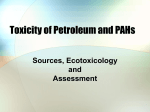 Toxicicity of Petroleum and PAHs