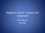 Staghorn Calculi -- Causes and Treatments