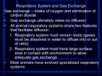 Respiratory System and Gas Exchange