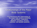 7-3.3 Summarize the relationships of the major body systems
