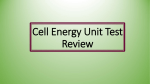 Cell Energy Test Review PowerPoint