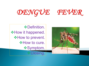 dengue fever - WordPress.com