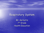Unit 3: The Respiratory System
