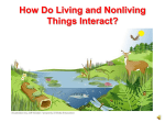 How do Living and Nonliving Things Interact? PowerPoint