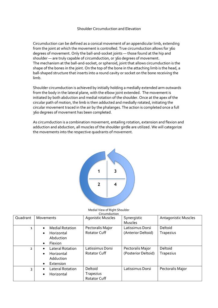 Circumduction and Elevation