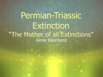"Permian-Triassic Extinction ""The Mother of all Extinctions"""