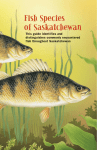 Fish Species of Saskatchewan - South Saskatchewan River