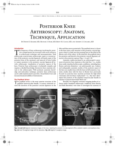 Posterior Knee Arthroscopy