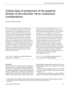 Critical sites of entrapment of the posterior division of the obturator