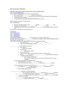 Biochemistry - studyres.com