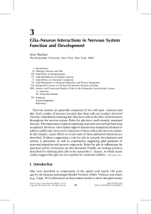 Glia–Neuron Interactions in Nervous System Function