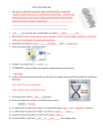 Study Guide Chap 6: DNA