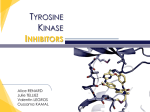 New TKI toward highly targeted therapies