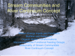 Stream Communities and The Continuum Theory