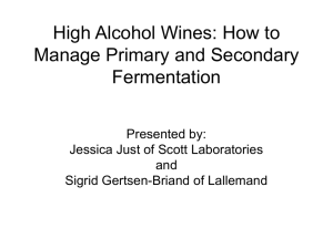 High Alcohol Fermentations: How to Manage Primary and