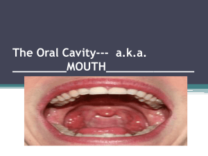 The Oral Cavity--- aka