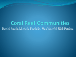 Coral Reef Fishes Ecology