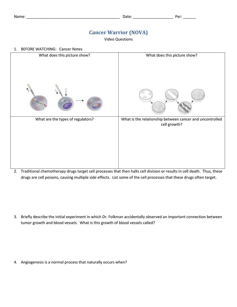 Cancer Worksheet Answer Key - Nidecmege