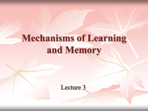 Mechanisms of Learning and Memory