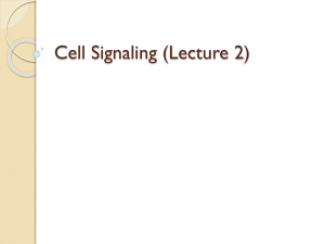 Each Cell Is Programmed to Respond to - Lectures For UG-5