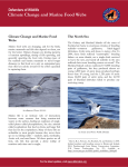 Climate Change and Marine Food Webs