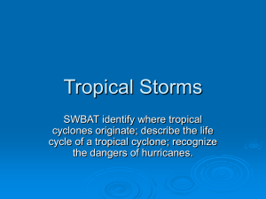 Tropical Storms - About Miss Brougham