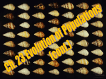 Causes of Microevolution - Effingham County Schools